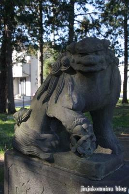 久伊豆神社(蓮田市川島)21