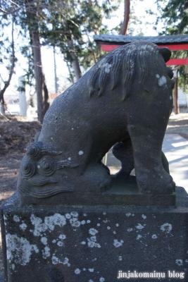 久伊豆神社(蓮田市川島)17