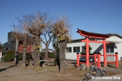 浅間神社(北足立郡伊奈町小室)1