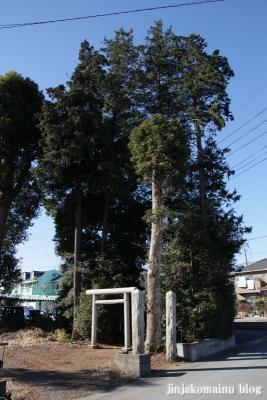 金比羅神社(上尾市原市)1
