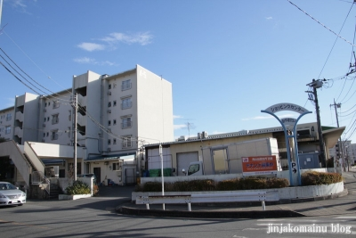 瓦葺氷川神社(上尾市瓦葺)18
