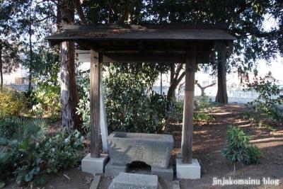 氷川神社(さいたま市見沼区丸ケ崎町)3