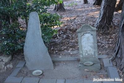 氷川神社(さいたま市見沼区丸ケ崎町)15