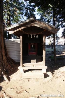 氷川神社(さいたま市見沼区丸ケ崎町)11