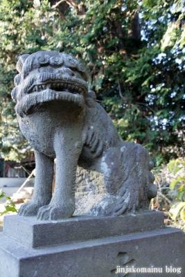 氷川神社(さいたま市見沼区丸ケ崎町)18