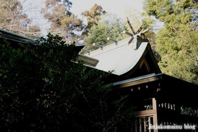 春日部八幡神社(春日部市粕壁)18