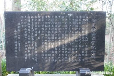 春日部八幡神社(春日部市粕壁)34