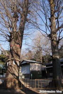 春日部八幡神社(春日部市粕壁)13