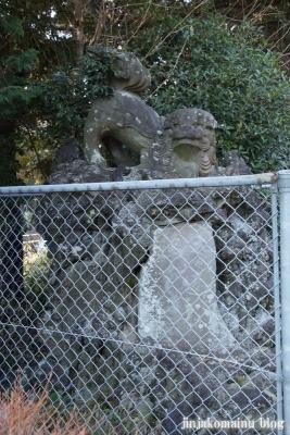 春日部八幡神社(春日部市粕壁)63