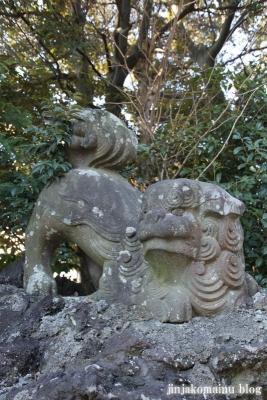 春日部八幡神社(春日部市粕壁)64