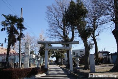 藤塚香取神社(春日部市藤塚)2