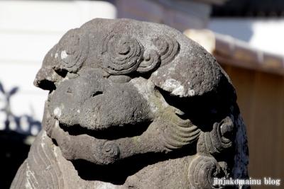 一ノ割香取神社(春日部市一ノ割)34