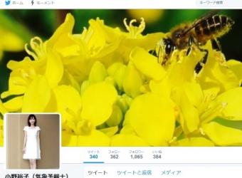 小野裕子(気象予報士)(@yufeb17)