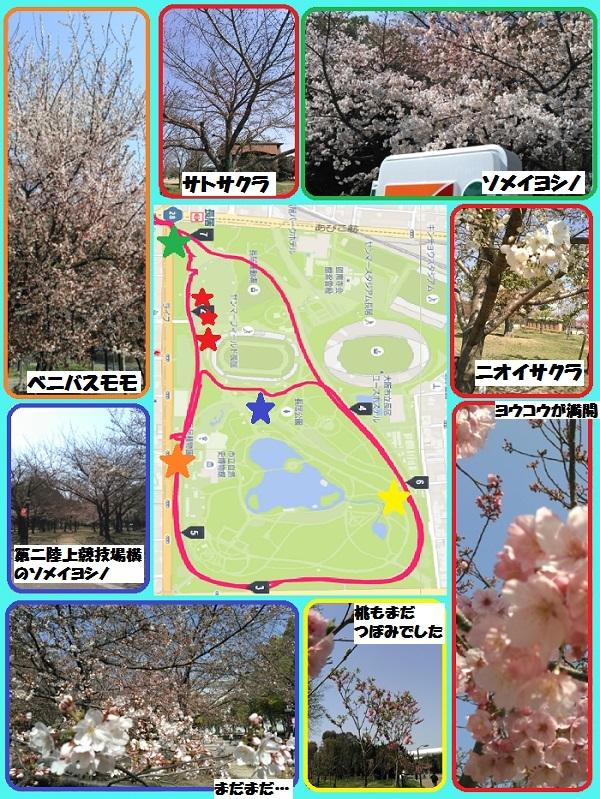17-04-04-13-13-36-779_deco_20170404131455.jpg