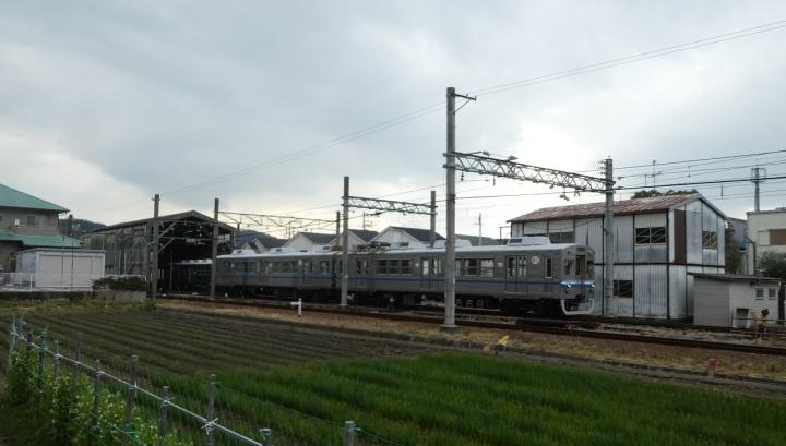 P1300999_.jpg