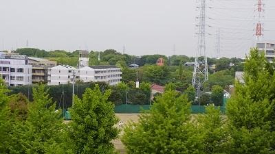 県立川口 緑多い