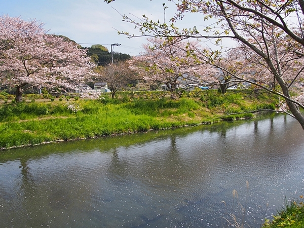 nakagawa-20170416-15s.jpg