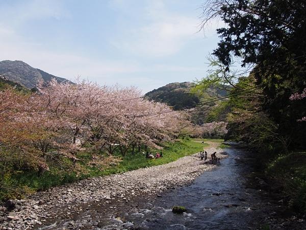 nakagawa-20170416-34s.jpg