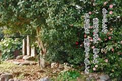 63-03.jpg