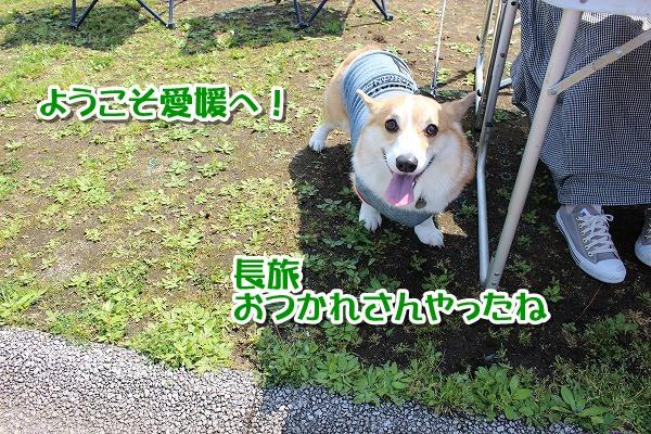 IMG_3071-1.jpg
