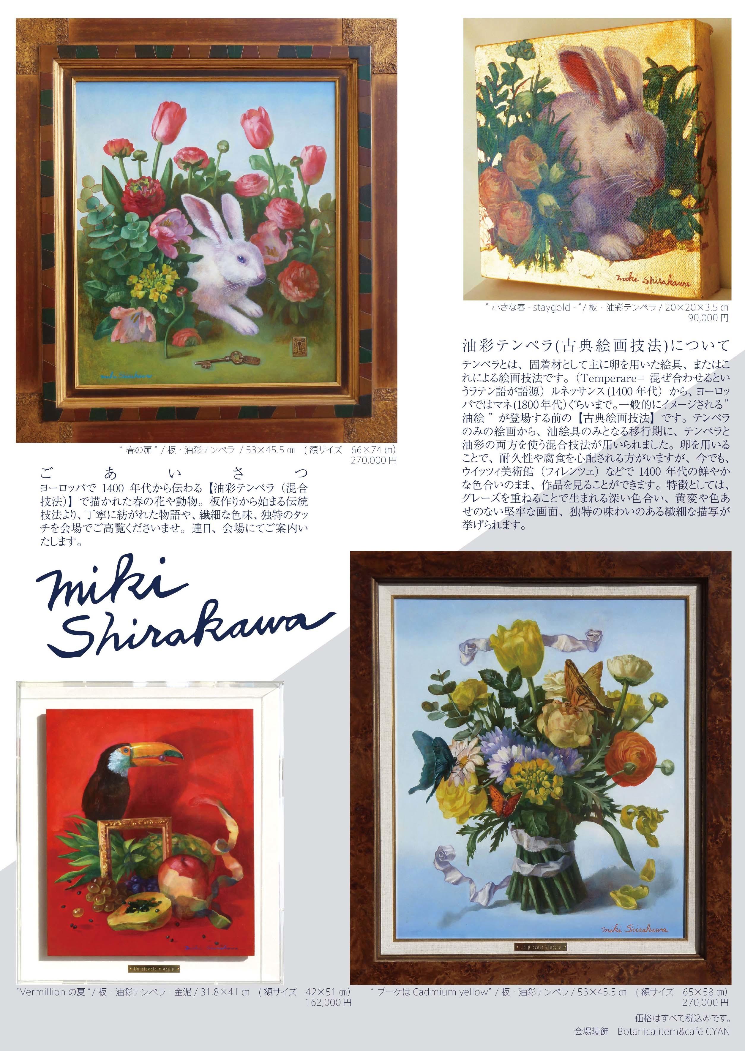 A4_shirakawadm_20170220_ura.jpg
