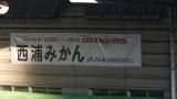 20161015大瀬崎065