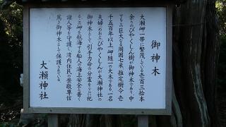 20161015大瀬崎113