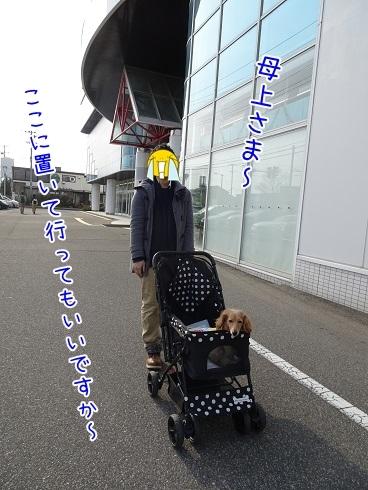 kinako6979.jpg
