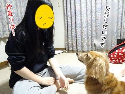 kinako7078.jpg