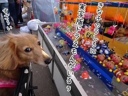 kinako7333.jpg