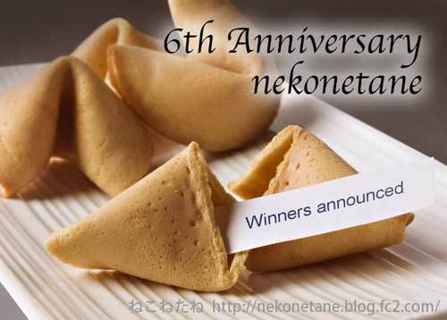 6th anniversary nekonetane winners announced