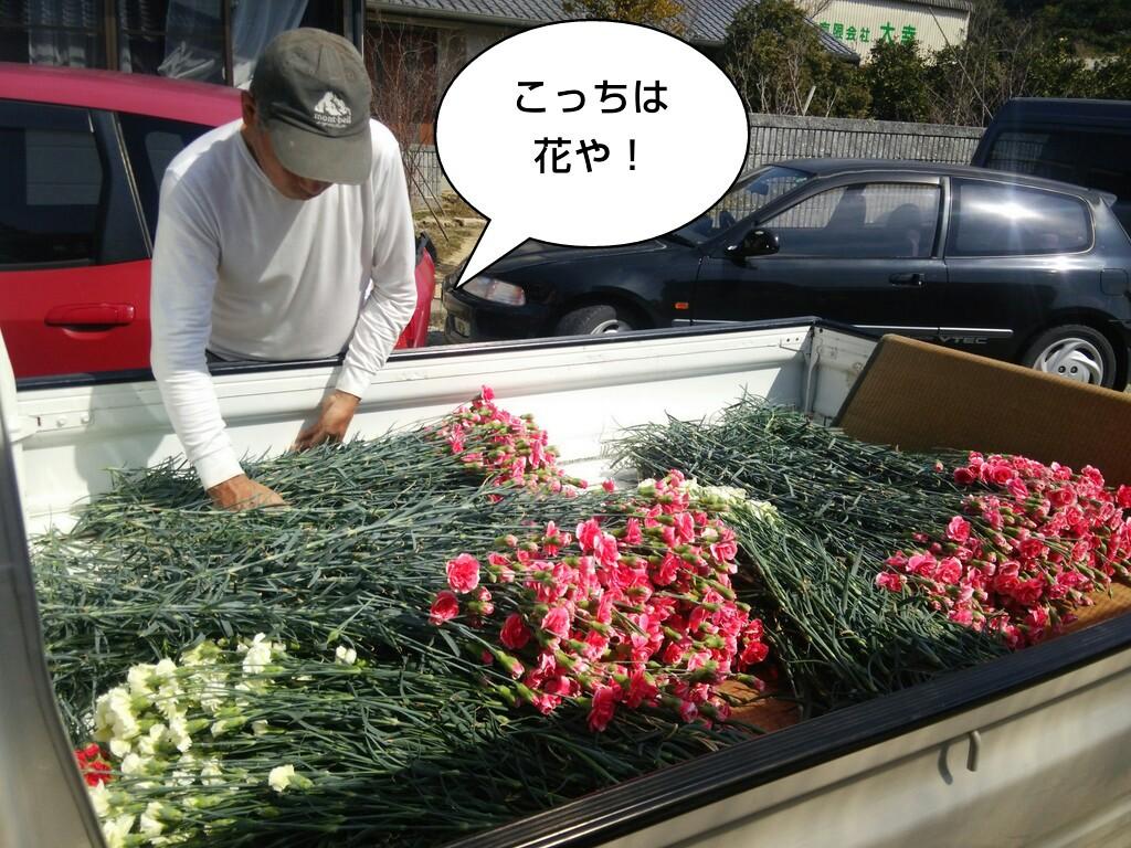 こっちは花や!