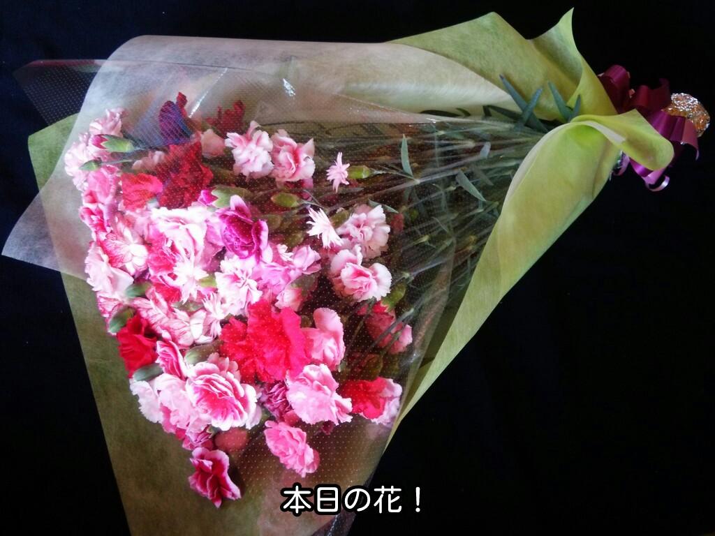 本日の花!