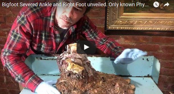 【アメリカ】冷凍保存していた「ビッグフット」の手足を動画で公開…1953年頃に捕獲し保存か?