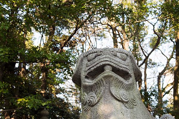 闇之森八幡社狛犬