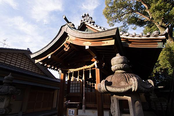 大井神社拝殿斜めから