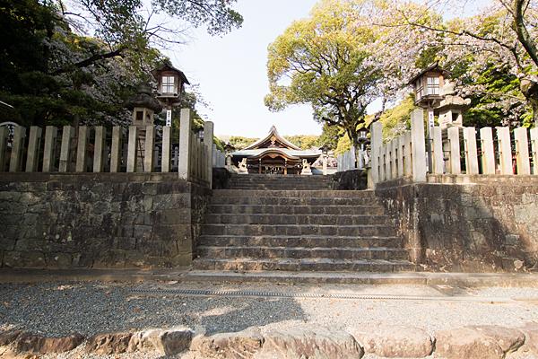 成海神社段々上る