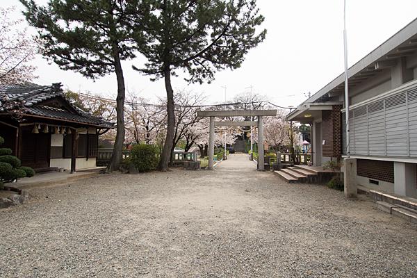 大乃伎神社境内の風景