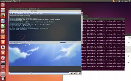 UbuntuAviutlTest026