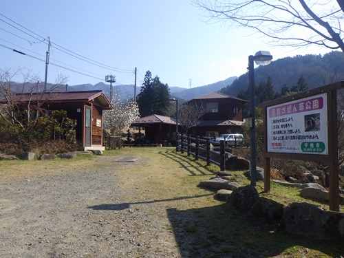 小倉山(ザゼンソウとカタクリの花を求めて)