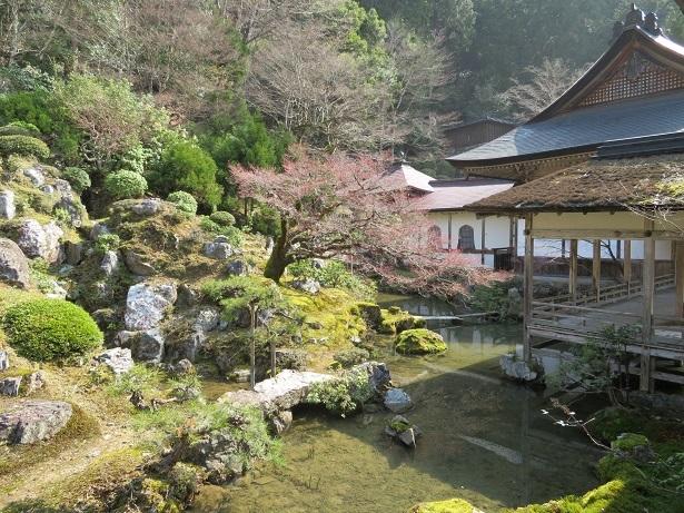常照皇寺の庭