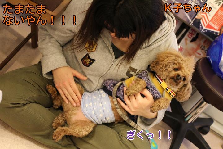 17-04-10-02-08-02-118_deco.jpg