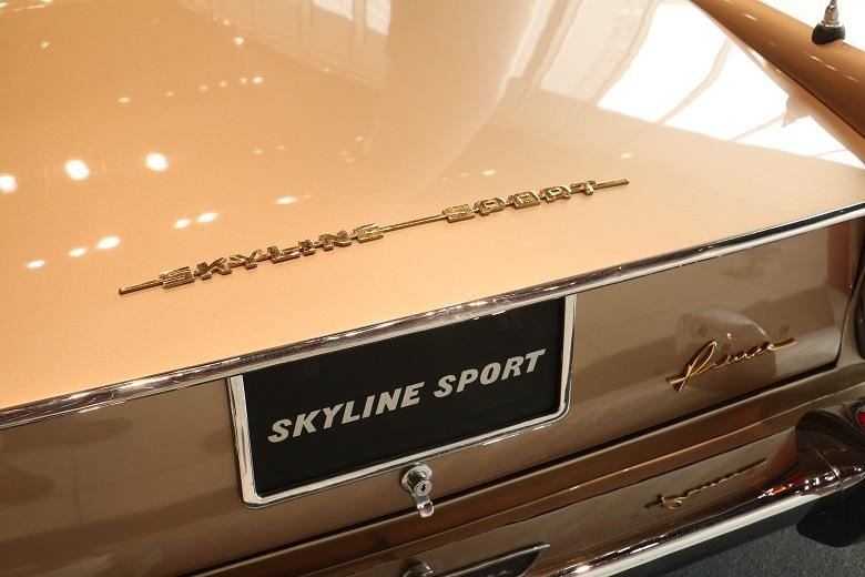 skyline_sport4.jpg