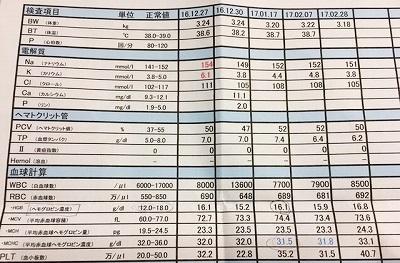 2017.2.28検査結果