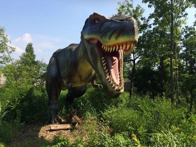 恐竜は、哺乳類や鳥類と同じ定温動物だった?