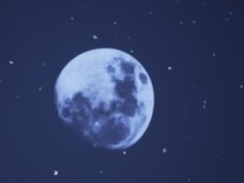 Conan月