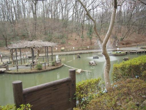20170401・野山北公園1-12