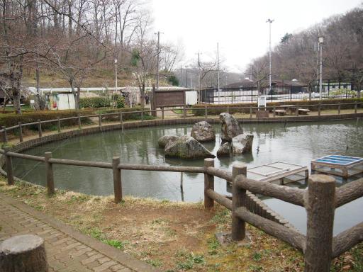 20170401・野山北公園1-11