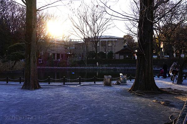 赤塚溜池公園003