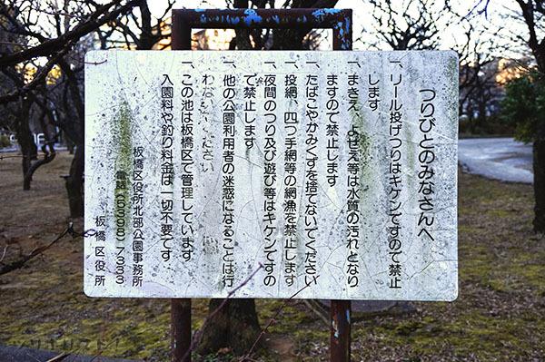 赤塚溜池公園004